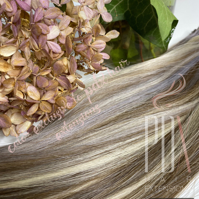 PDX Hair Extensions 60_silver_8-2.jpg