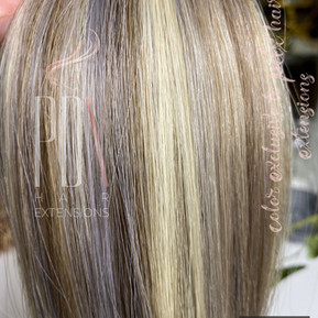 PDX Hair Extensions 60_silver_8.jpg
