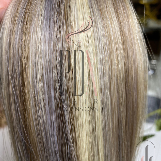 PDX Hair Extensions Silver_60_8.jpg