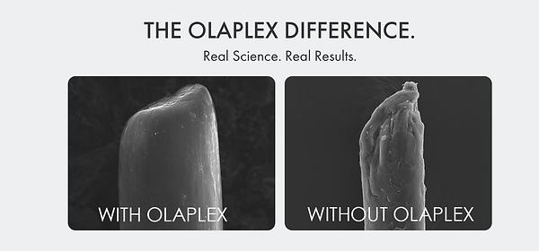 Olaplex treatment service