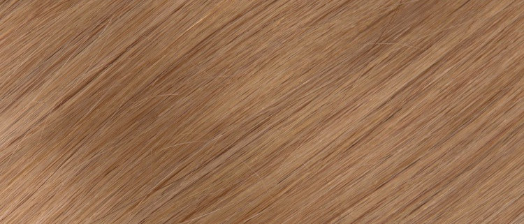 #10 Natural warm Blonde Clip In Hair Extensions,