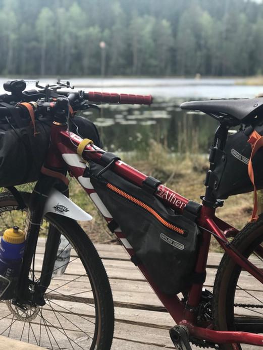 potrait bike