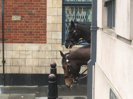 Spotted in Clerkenwell: two curious horses