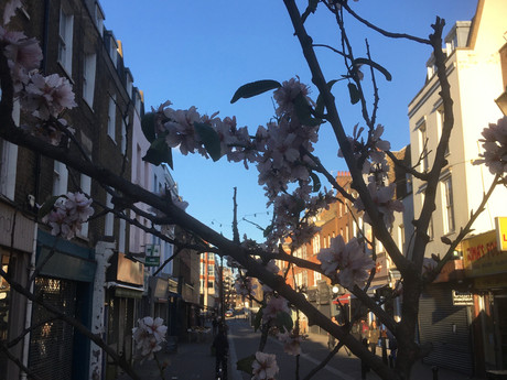 Clerkenwell on a Friday: something hopeful in the air?