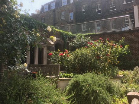 A peaceful therapeutic place in Clerkenwell: St John Cloister Garden