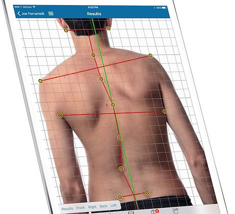 posture screen example.jpg