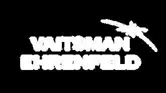 Vaitsman Ehrenfeld logo transparent (bla