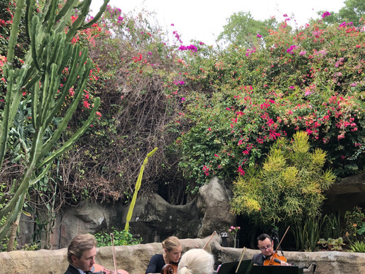 Real Wedding Review: String Quartet at Sunken Gardens in St. Petersburg (VIDEO included)
