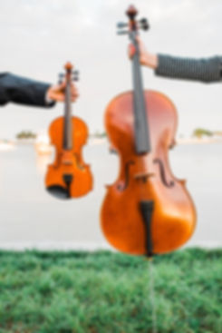Violin and Cello, Wedding Music
