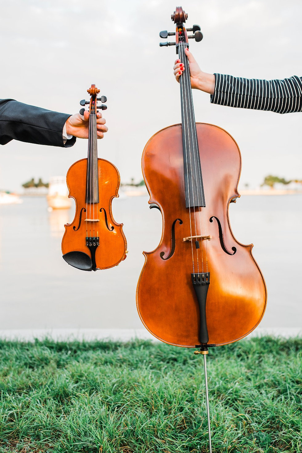 Violin and Cello, Wedding Music