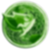 GREEN METAL copy.png