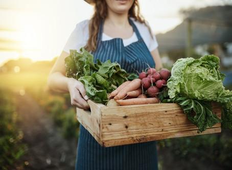 Compreenda os benefícios da alimentação orgânica para a saúde