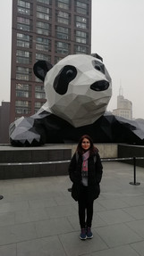 With Giant Panda, visiting Sichuan University 2018