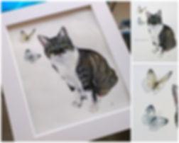 Tabby cat pet portraint.