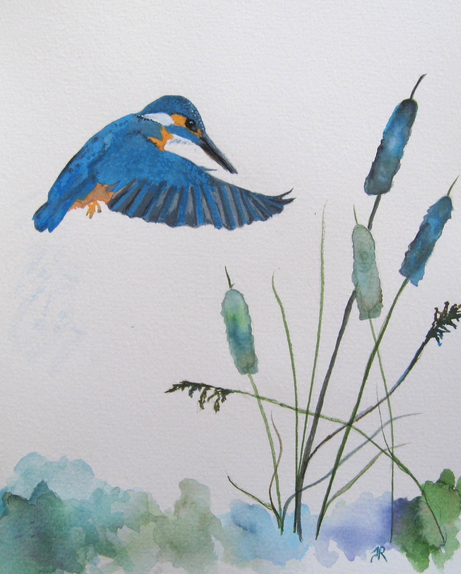 Kingfisher Painting.