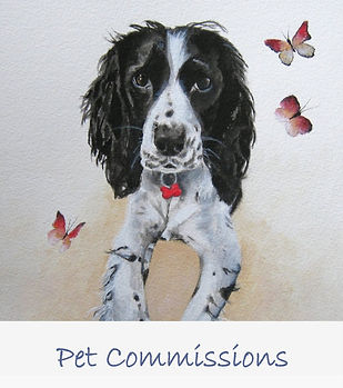 Pet Portrait Paintings.