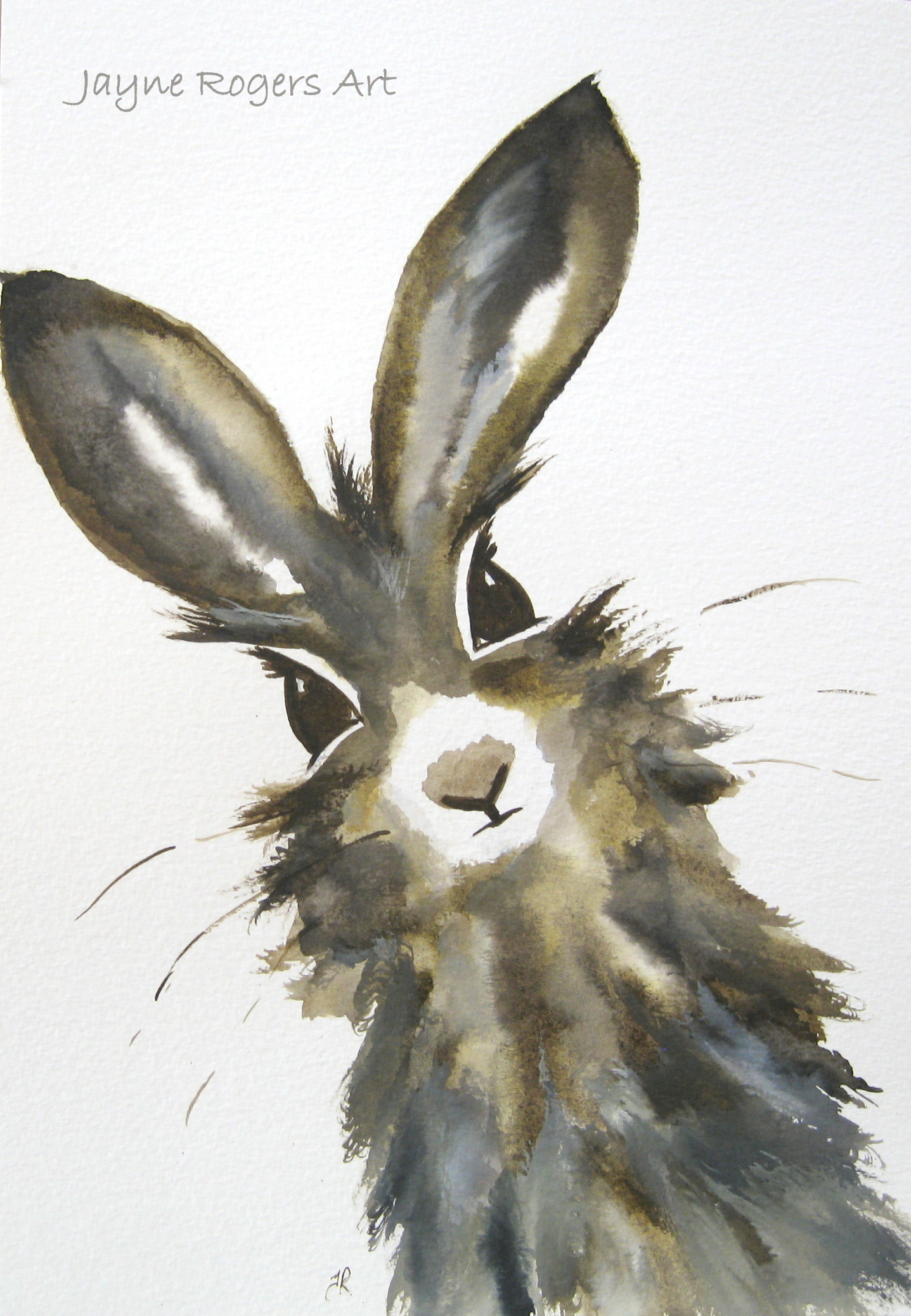 Brown Eyed Hare.