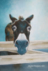 Donkey Painting. Animal Painting by Jayne Rogers Art.