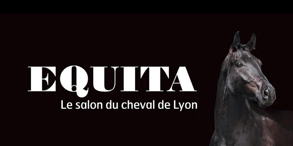 TDA Equita Lyon