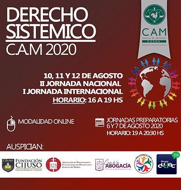 """""""Jornada preparatória"""" e """"I Jornada Internacional de Direito Sistêmico"""" na Argentina e novo artigo."""
