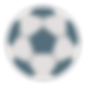 icons8-soccer-ball-100.png