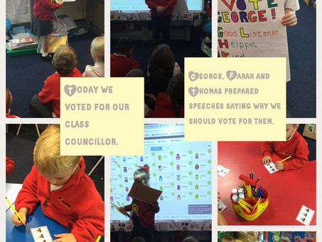 Year 1 Voting