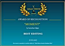 """2015 yılında Toronto Urban Film Festivalinde """"Theory"""" filmi ile izleyici ödülleri dalında birincilik ödülü alan yönetmen """"Baturhan BİLGİN"""" bu sefer de Moment filmi ile Gold Movie Awards film yarışmasından en iyi kurgu dalında ödül aldı. 11 Ocak 2018tarihinde Londra """"Canada Water Center"""" kültür merkezinde yapılacak ödül töreninde ödüller sahiplerini bulacak."""