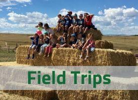 Field Trips.jpg