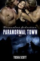 Vol 5 Werewolves Seduction E-Book Cover.