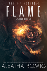 BK2 Flame E-Book Cover.png