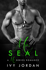 BK2 Mr. SEAL E-Book Cover.png
