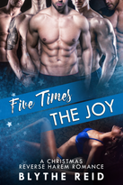 3 Five times the joy E-Book Cover.png