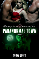 Vol 5 Paranormal Town E-Book Cover.png