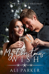 BK13 My Christmas Wish E-Book Cover.png