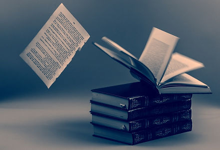 book-1463129133oZ4_edited.jpg
