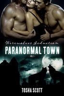 Vol 1 Werewolves Seduction E-Book Cover.