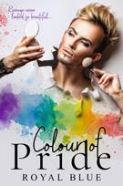Colour of Pride E-Book Cover.jpg