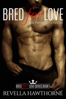 BK 1.2 Bread For Love E-Book Cover.png