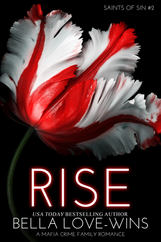 BK2 RISE E-Book Cover.png