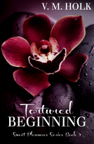 3 Tortured Beginning E-Book Cover.png
