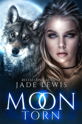 BK2 Moon Torn E-Book Cover.png