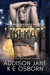 BK2 Liberate E-Book Cover.png