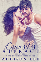 BK3 Opposites Attract E-Book Cover.png