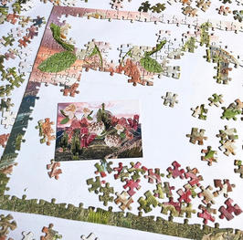 Pieces-of-the-Puzzle