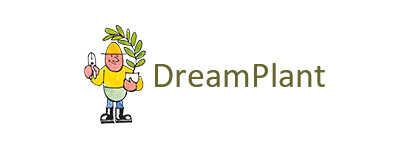 website dreamplant.jpg