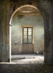 Suzanne Moxhay_Dormer