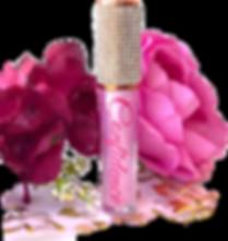 lip gloss.PNG