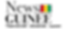 News Guinee.png