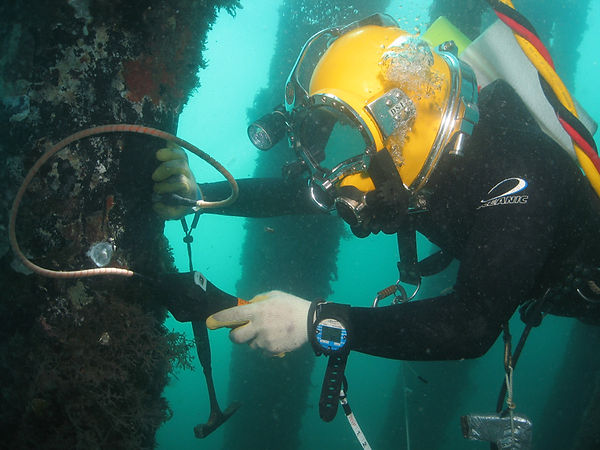 208_Cygnus-Underwater-Application-Shot-6
