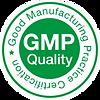 GMP Logo png.png